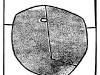 dynia09 - linoryt 20x20cm